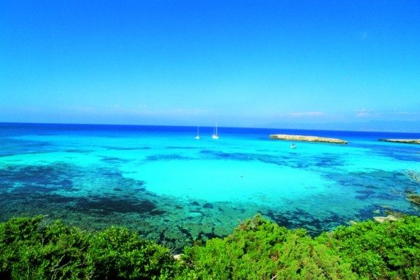 Coral Hotel Beach & Resort 5* 8 j/7 nuits, Paphos, Chypre
